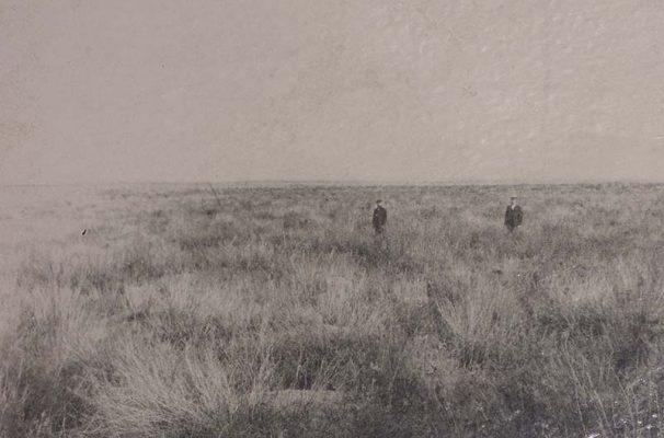 На этом месте будут питомник и сосновый лес (1902 год)
