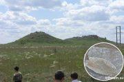Камышинские горы Уши и отпечаток окаменевшего листа
