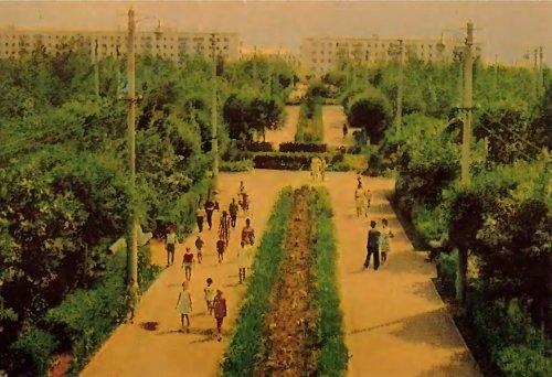 Парк Текстильщиков на открытке 1969 года фотографа А. Мусина