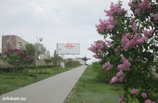 Камышин. Расцветает Сиреневый бульвар