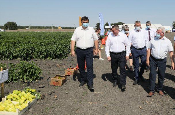 Совещание в Средней Ахтубе (пресс-служба администрации Волгоградской области)