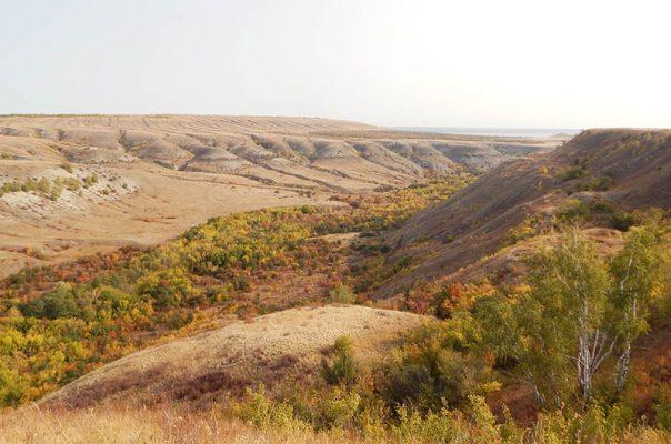 Природный парк «Щербаковский». Сентябрь