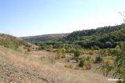 Щербаковский природный парк (из архива infokam.su)