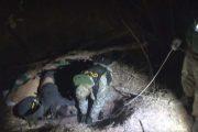Тайник в лесопосадке (кадры оперативной съемки УФСБ по Волгоградской области)