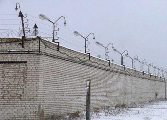 За этим забором проходит курс лечение людоед Спесивцев