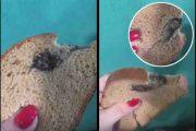 Скриншоты с видеозаписи