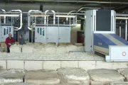Начало переработки хлопка (ООО «Камышинский текстиль»)