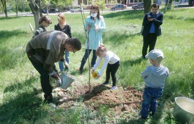 В парке Топольки высаживаю деревья добровольцы-общественники