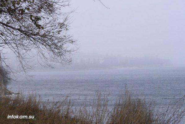 Камышин в туманно-дождливой дымке