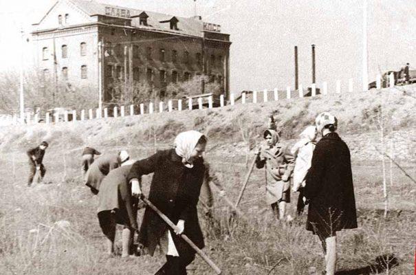 Работы по очистке территории и досадке саженцев в парке Топольки (за ограждением Бородинского моста виден лакокрасочный завод «Победа», снесённый в 1974 году)