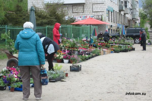Камышин. Цветочный рынок