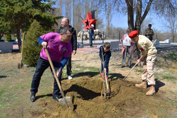 Высадка каштанов в рамках акции «Сад Памяти»