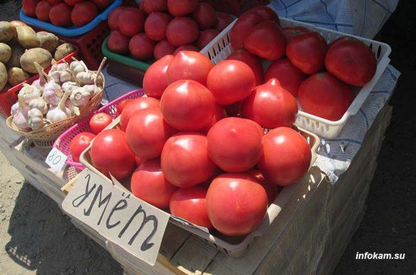 Камышин, Умётовские помидоры на сельхозярмарке