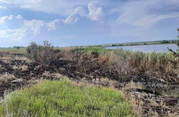 Пожары наносят природному парку «Щербаковский» огромный ущерб