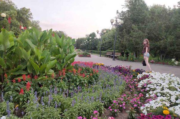 В парке Комсомольцев-добровольцев (фото Андрея Бородина)
