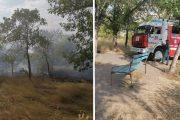 Ликвидация возгорания травы в парке Текстильщиков (фото Дмитрий Семёнов)