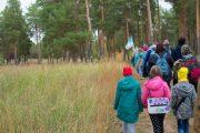 Всероссийский День ходьбы в камышинском лесопитомнике ВНИАЛМИ (фото Молодежный клуб РГО «Новое поколение»)
